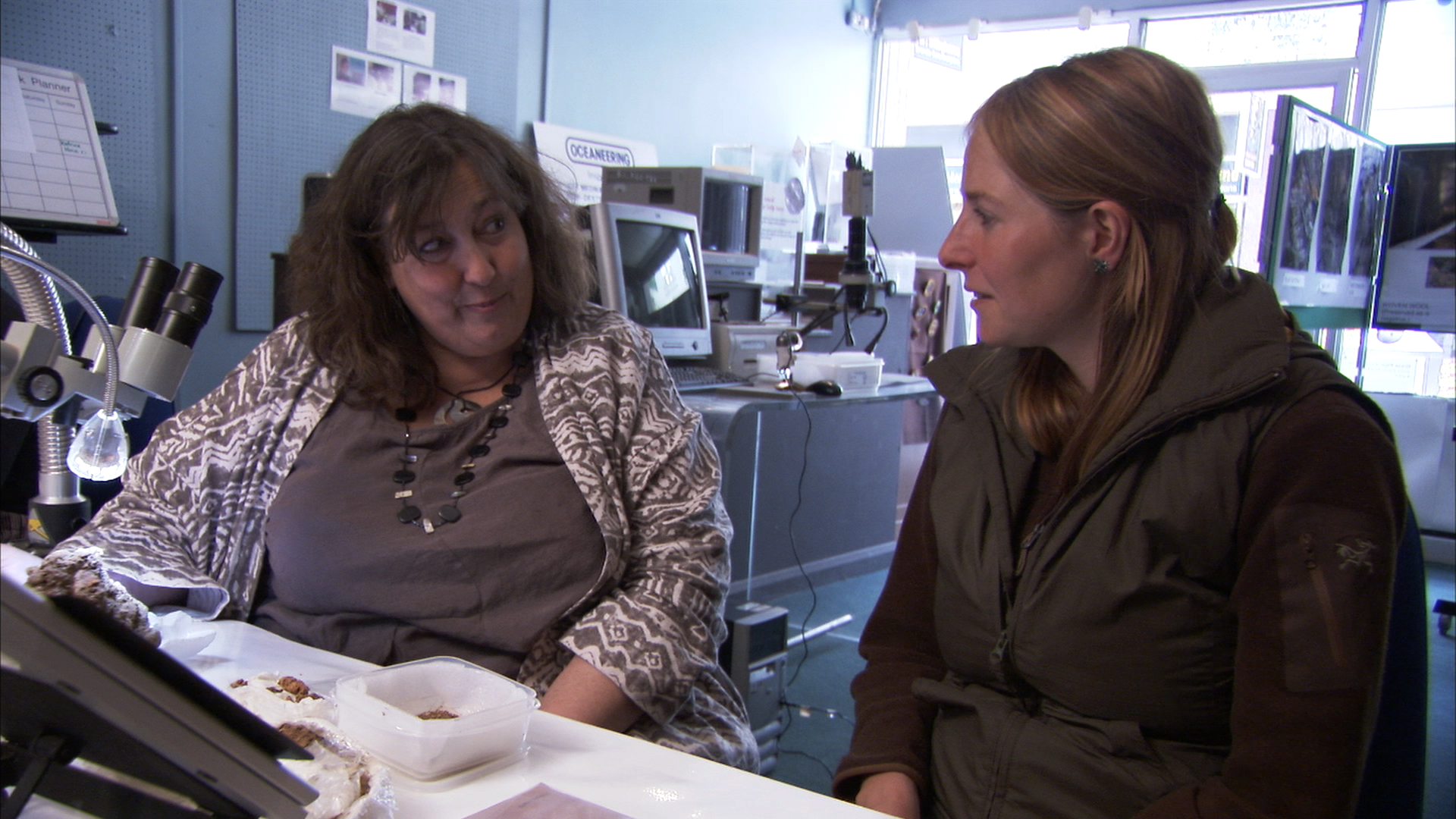 Under the Microscope - Archaeological Conservation