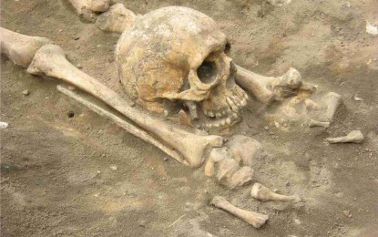 Roman cemetery discovered in Great Ellingham