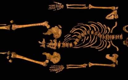 Richard III: found!