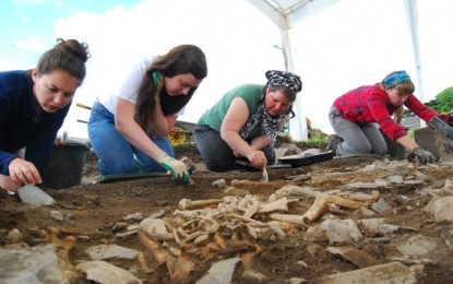 Irish Archaeological Field School
