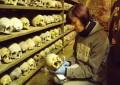 LAUREN MCINTYRE – Introduction to Human Osteology