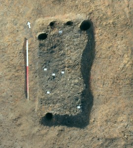 The bustum, with seeds marked with white squares. Photo: Colchester Archaeological Trust