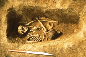 NEM84_sk060-Norton-burial-with-shield-boss-and-spearhead-visible---credit-Tees-Archaeology