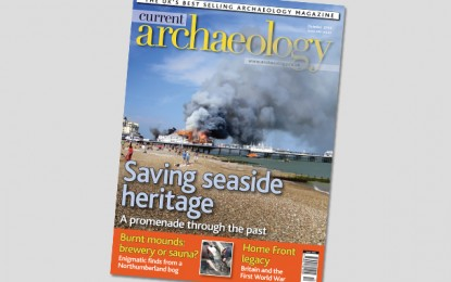 Current Archaeology 295