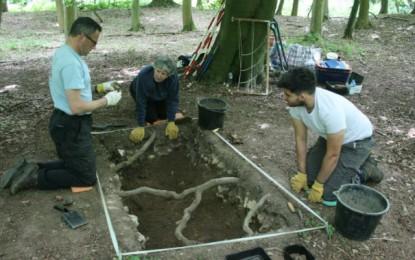 Warren Wood – Archaeology In Marlow (AIM)