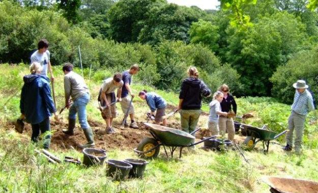 Saveock Water Archaeology