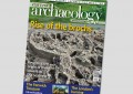 Current Archaeology 308 – out now!