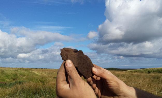 Swartigill Iron Age Project